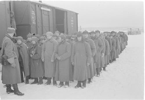 Szovjet hadifoglyok az első támadást követően, 1939. december 1. Finn Védelmi Erők Archívuma, SA-KUVA