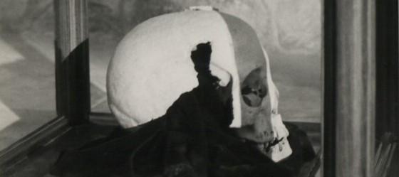 A koponya, amit a németek csak két vesztes világháború után adtak vissza