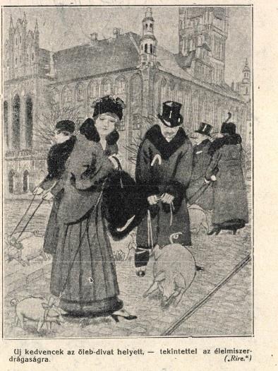 Magyar karikatúra 1915-ből. In: Tábori Kornél (szerk): Háborús album, a világháború történelme képekben . Pesti Napló, 1915. p. 16.