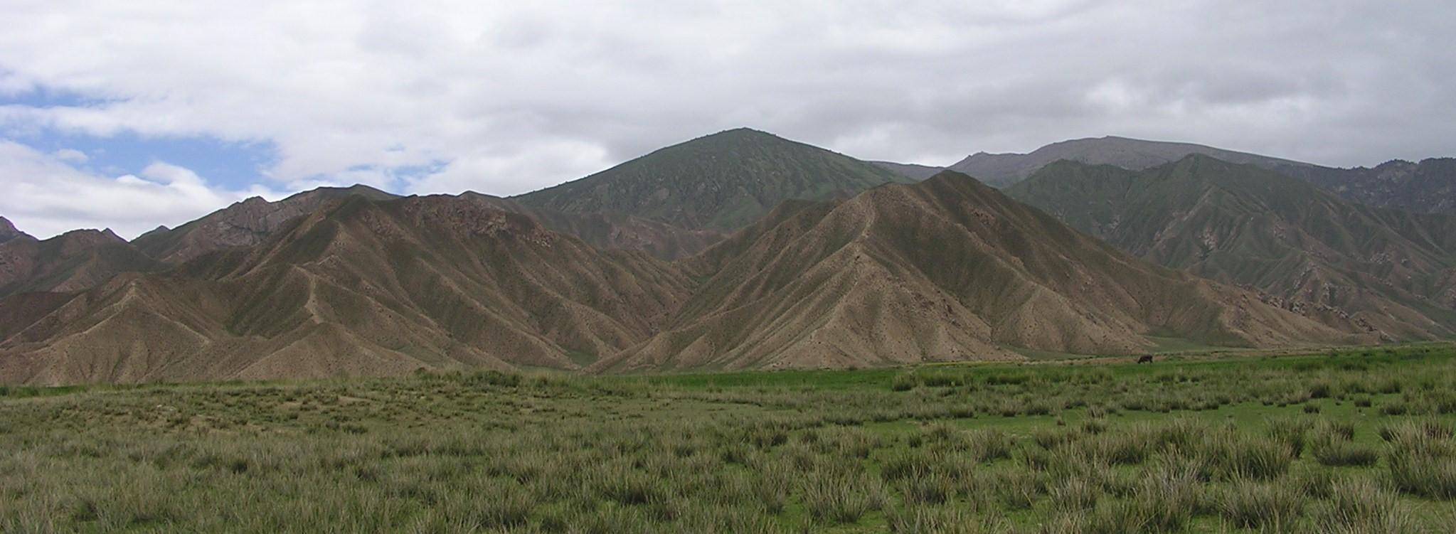 A Tibeti-fennsík nagy része főként állattartásra alkalmas magashegyi legelő