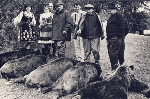 A foglalkozás elérte célját. Ceausescu (micisapkában) és zsákmánya 1966-ban. Lehet, köztük van az ominózus vadkan?