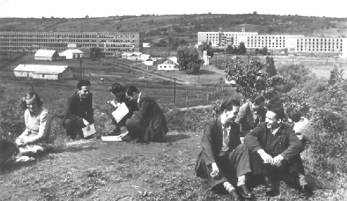Hallgatók a miskolci Rákosi Mátyás Nehézipari Műszaki Egyetemen, 1956. Forrás: Ungváry Rudolf: Utána néma csönd. Történelmi Igazságtétel Bizottság 1956-os Intézet, Budapest, 1991.