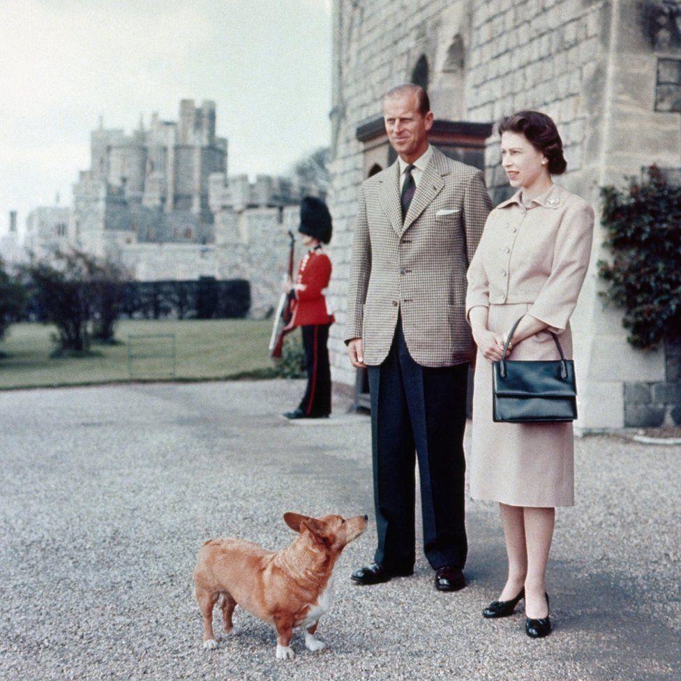A királyi házaspár és Sugar (Cukor), a welsh corgi