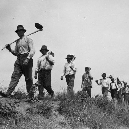"""""""Aki kihúzza a mezsgyekarót, azt agyonverjük"""" – Békési parasztok """"ellenállása"""" az 1950-es években"""