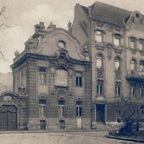 A koraszülöttmentés hőskora Magyarországon- a Schöpf-Merei Ágost Kórház és Anyavédelmi Központ