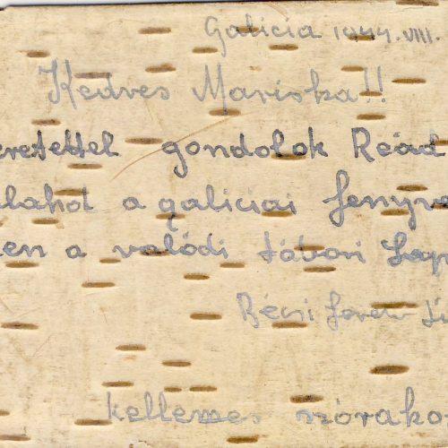 Bécsi Ferenc határvadász szakaszvezető második világháborús füzetei, II. rész