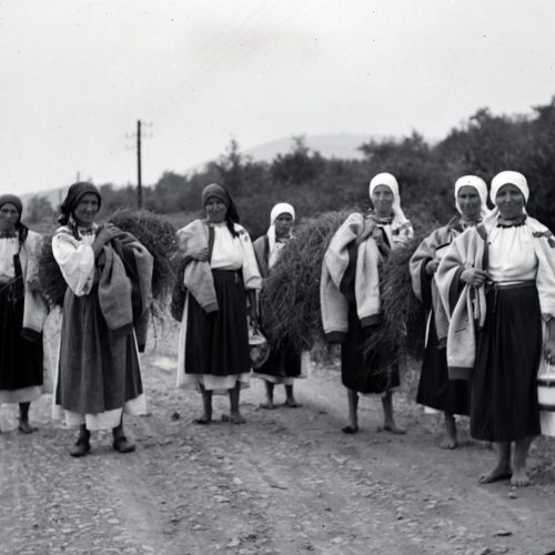 Jelenetek egy házasságból – Recenzió Az együttélés történelme: nemzetiségi kérdés Magyarországon című könyvről