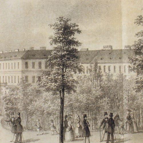 A pesti Széchenyi-liget létrejötte a 19. században